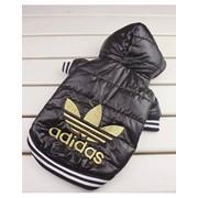 """Зимния куртка """"Adidas"""" фото"""