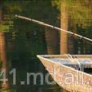 Ризол -Сельское хозяйство и рыболовство фото