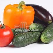 Овощи в ассортименте фото