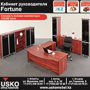 """Мебель для кабинета руководителя """"Fortune"""" фото"""