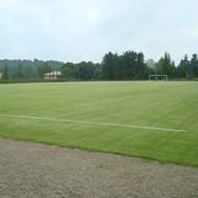 Уход, подготовка, обслуживание спортивных газонов фото
