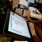 Планшет 3Q Tablet PC фото