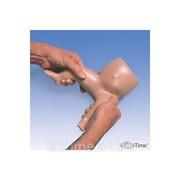 Модель бедер младенца 1005864 фото