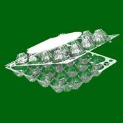 Упаковка для перепелиных яиц УК-26 фото