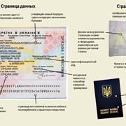 Оформление загранпаспорта в Запорожье фото