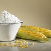 Крахмал кукурузный фото