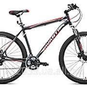 Велосипед Avanti Canyon 29 фото