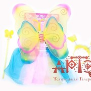 Набор Бабочка радужная фото