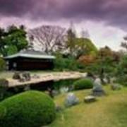 Отдых и оздоровление за рубежом Япония фото