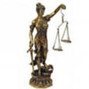 Представление интересов Заказчика в арбитражных судах и судах общей юрисдикции. фото