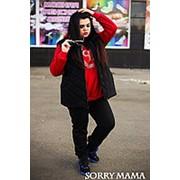 Теплый спортивный костюм тройка брюки+кофта+жилет ( 4 цвета ) фото