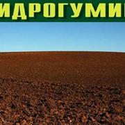 Препарат гуминовый Гидрогумин универсальный (активатор почвы) фото