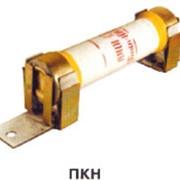 Предохранители ПКН-10-01 фото