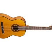 Классическая гитара Takamine GC3 (NAT) фото