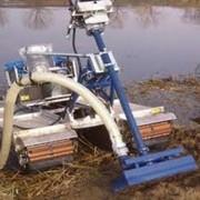 Добыча и реализация лечебного сапропеля озера Молтаево фото