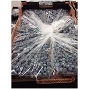 Торговая упаковка Xtend® для голубики/черники фото
