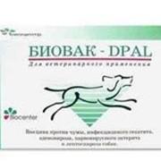 Вакцины для профилактики болезней собак фото