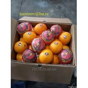 Апельсин Valensia фото