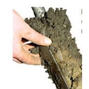 Удобрения органические Биотерра (гумифицированный компост) фото