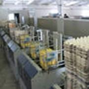 Машины для сортировки и упаковки яиц фото