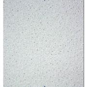 Подвесной потолок по типу Армстронг Ярослав фото