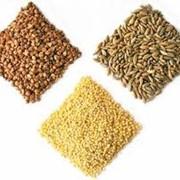 Крупы пшеничные. Крупы пшеничные от производителя. У нас самые дешевые цены по всей Черкасской области крупы пшеничные. Мы реализуем крупы пшеничные оптом и в розницу. фото
