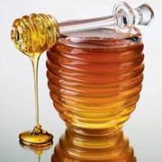 Мед донниковый, Донниковый мёд, Мёд фото