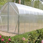Теплица Перчина-М, длина 4200 мм, поликарбонат 4 мм, 10 лет заводской гарантии фото