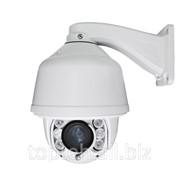 IP PTZ камера NeoVision NV-200PTZ фото