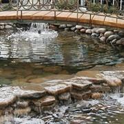 Проектирование и строительство садовых водоемов и пешеходных мостиков. фото