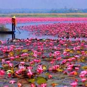 Туры во Вьетнам фото