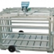 Клетка для взвешивания WK-01 фото