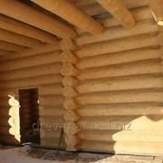 Отбеливание древесины срубов от черноты фото