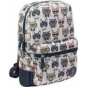 Рюкзак 'Молодежный Mini' коты фото