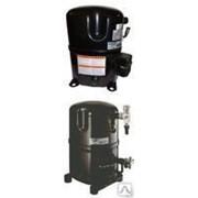 Холодильный компрессор TAG 4553 Z Tecumseh фото
