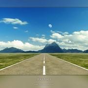 Адегизионная дорожная Амдор-9 фото