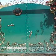 Комбинированные ворота с коваными украшениями фото