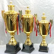 Набор кубков (трофеи), наградные MY6 фото