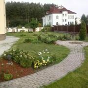 Косьба (покос) травы фото