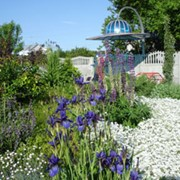 Услуга сопровождения в садовых центрах фото
