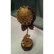 Сувениры денежные, Денежное дерево фото