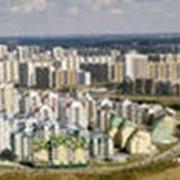 Управление и реализация объектов недвижимости фото