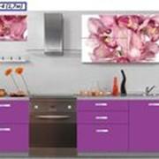 Кухня с фотофасадом (розовые цветы) фото