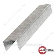 Скоба Intertool RT-0108 8 мм, уп. 1000 шт. ширина 11.3 мм * сечение 0.70 мм №460590 фото
