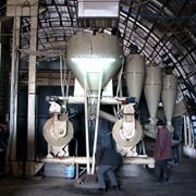 Линии для производства топливных гранул (гранулирования, пеллетирования) фото
