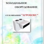 Холодильное оборудование, холодильные камеры, склады фото