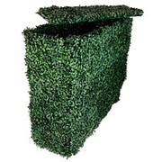 Изгородь искусственная (самшит зеленый) 75 высота*75 ширина*25 см/MZCLT-6045 фото