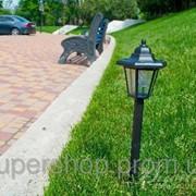 Садовый светильник на солнечной батареи PL-239 003590 фото