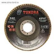 Круг лепестковый торцевой TUNDRA, 115 х 22 мм, Р40 /10/200/ фото