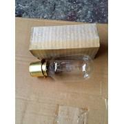 Лампа ПЖ 50-500-1 фото